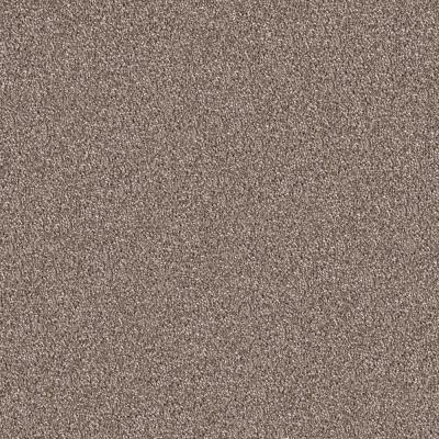 Modern Design Foremost Brown 24 in. x 24 in. Residential Peel and Stick Carpet Tiles (12 Tiles/Case)