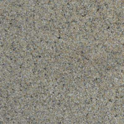 Port Abigail II - Color Bay Texture 12 ft. Carpet