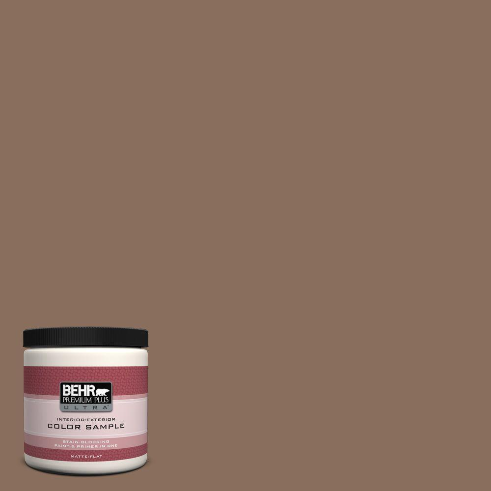 N190 6 Nut Brown Matte Interior Exterior Paint And Primer In One Sample
