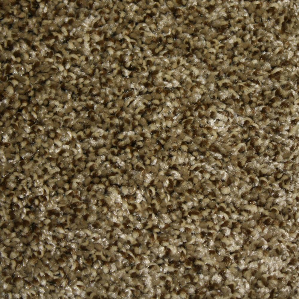 Home Decorators Collection Carpet Sample Shackelford Ii