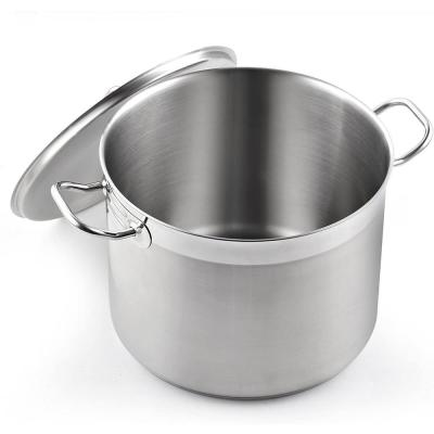Professional Grade 8 qt. Stainless Steel Stock Pot with Lid