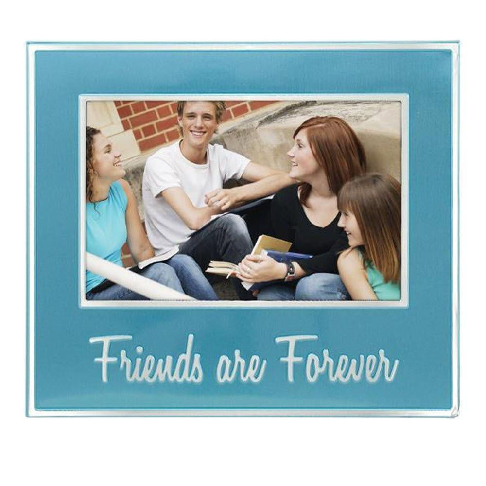 Home Decorators Collection Friends Are Forever 1-Opening 7 in. x 8 in. Blue Picture Frame