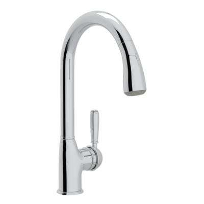 Classic Single-Handle Pull-Down Sprayer Kitchen Faucet in Polished Chrome