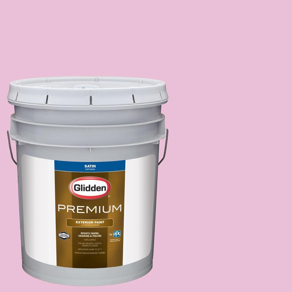 Hdgr03 Bubblegum Pink Satin Latex Exterior Paint