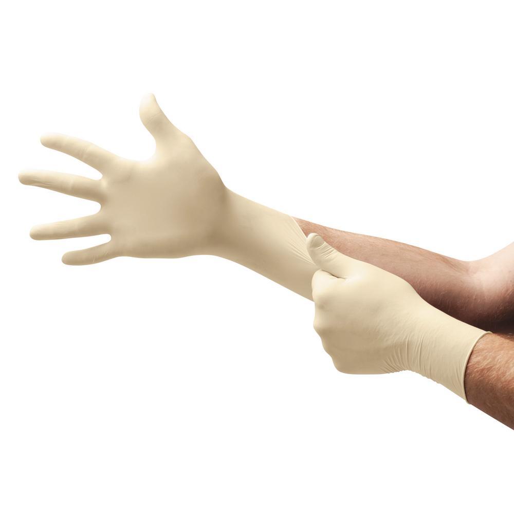 Premium Disposable Latex Gloves, Medium (100-Count)