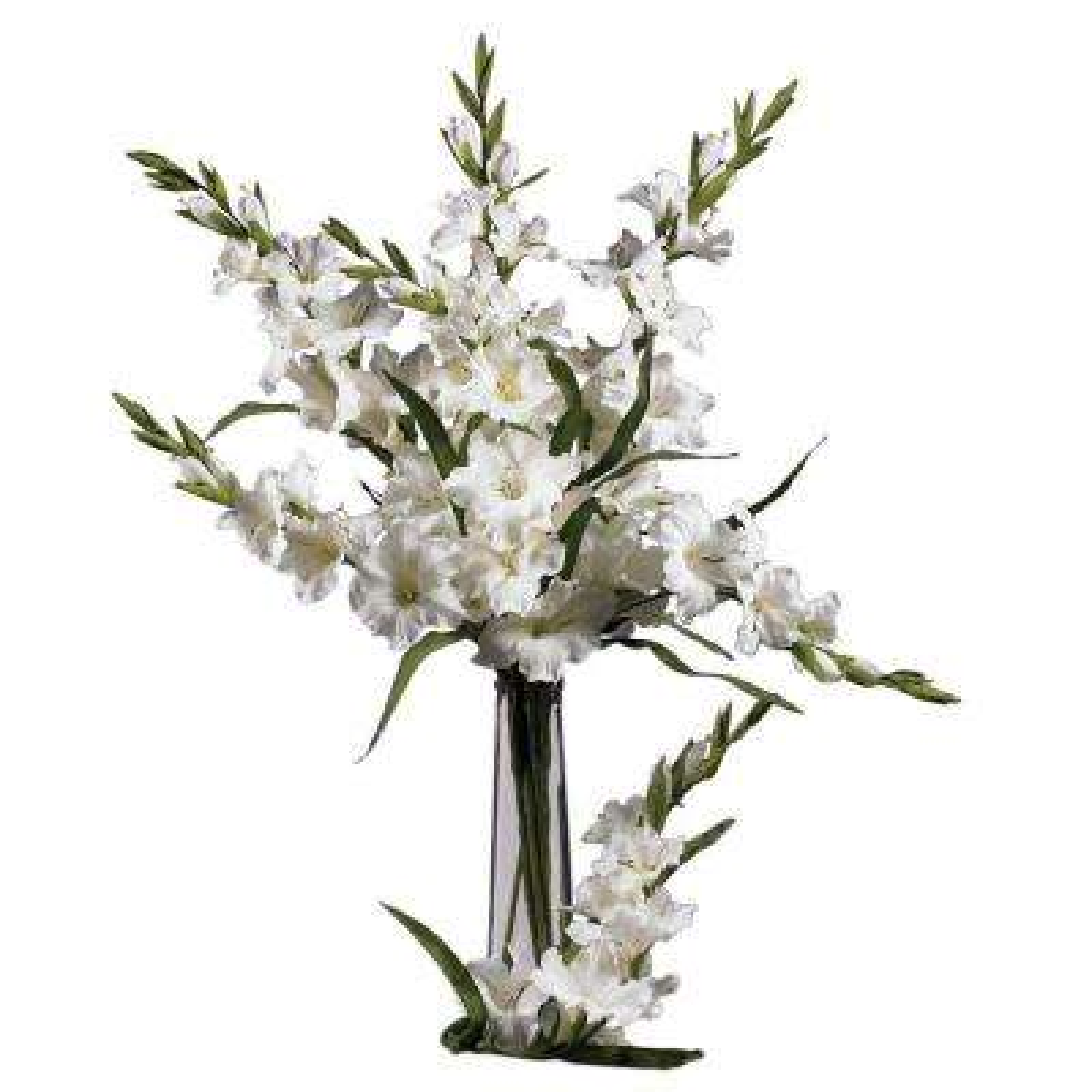36 in. H White Gladiola Stem (Set of 12)