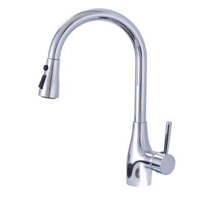 Single-Handle Pull-Down Sprayer Kitchen Faucet with 2-Function Sprayhead in Chrome