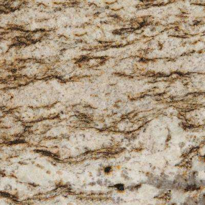 3 in. x 3 in. Granite Countertop Sample in Bianco Lucre