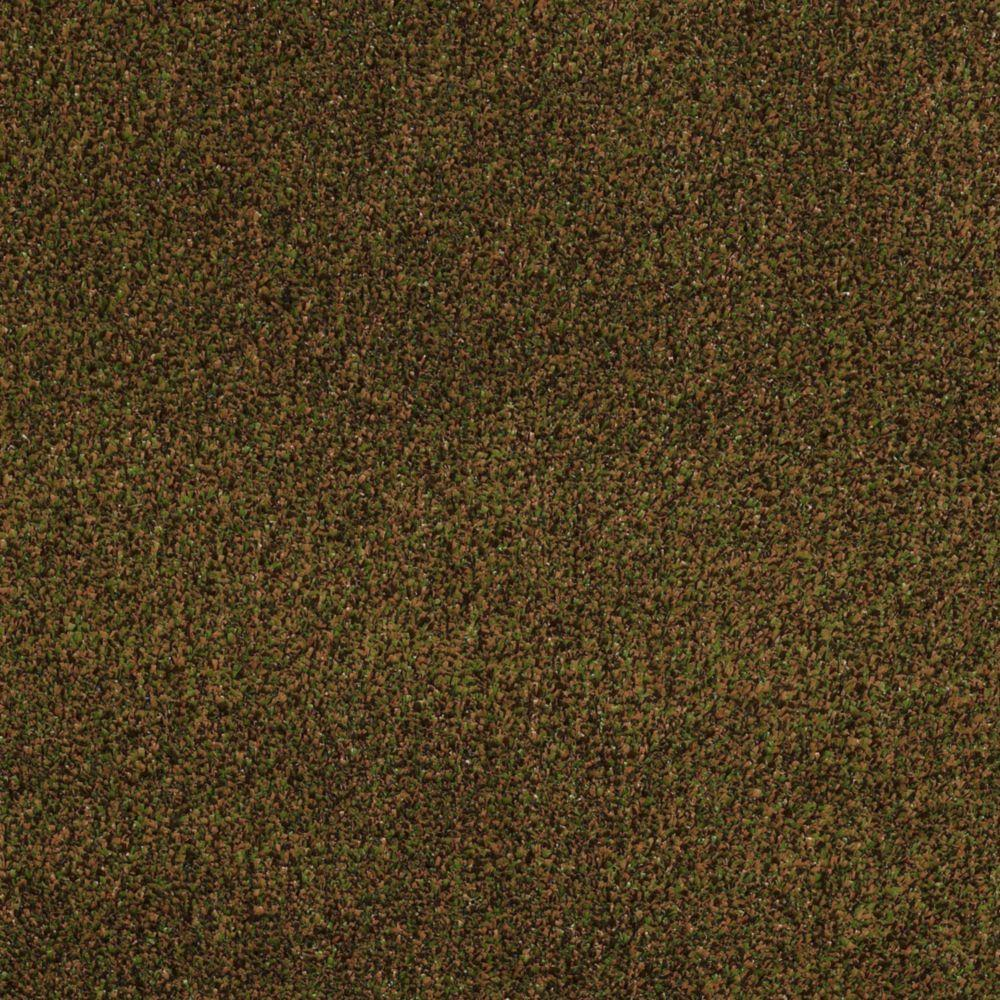 TrafficMASTER Toulon - Color Spices 12 ft. Carpet