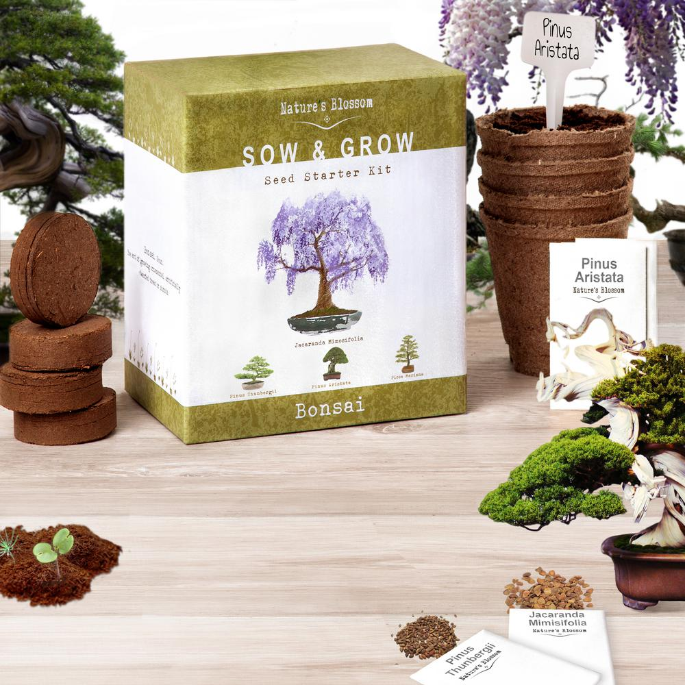 Bonsai Growing Kit Grow 4 Types Of Miniature Trees Set With Seeds Soil Planting Pots Labels And Guide
