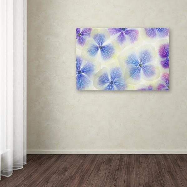 """Trademark Fine Art 12 in. x 19 in. """"Blue and White Hydrangea Flowers"""" by Cora Niele Printed Canvas Wall Art"""
