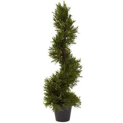 30 in. Indoor/Outdoor Rosemary Spiral Tree