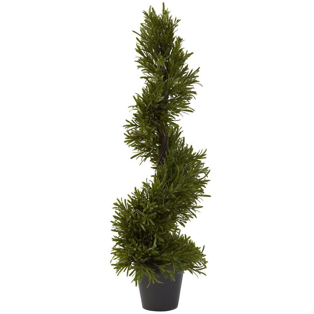 30 in. Indoor/Outdoor Rosemary Spiral Tree