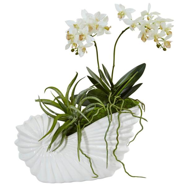 Nearly Natural Indoor Succulent and Mini Phalaenopsis Silk Arrangement in Shell