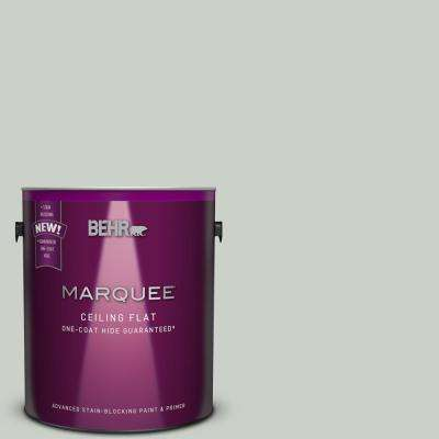 1 gal. #MQ3-48 Tinted to Shy Green One-Coat Hide Flat Interior Ceiling Paint and Primer in One