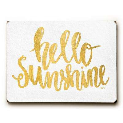 "9 in. x 12 in. ""Hello Sunshine"" by Misty Diller Solid Wood Wall Art"
