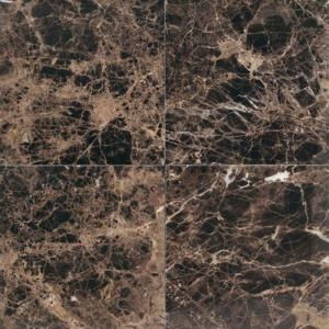 Daltile Natural Stone Collection Emperador Dark 12 In X
