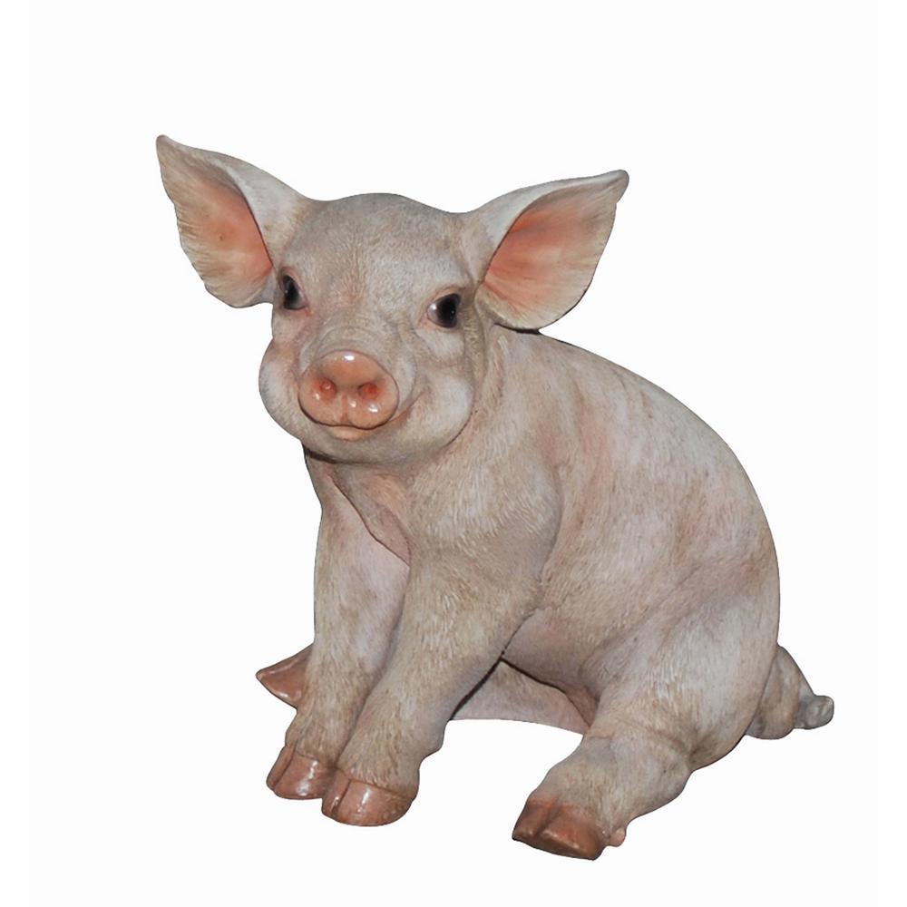 Medium Pig Sitting