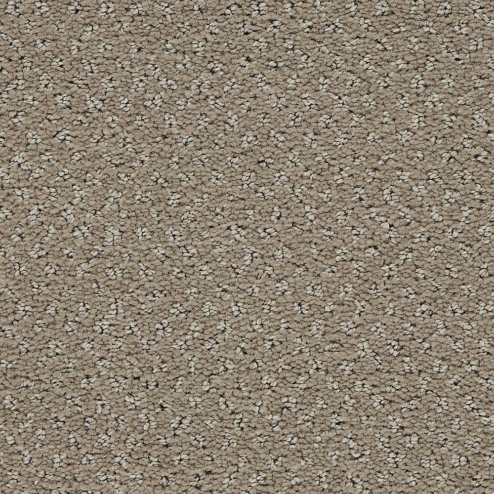 Pretty Penny - Color Rustic Pattern 12 ft. Carpet