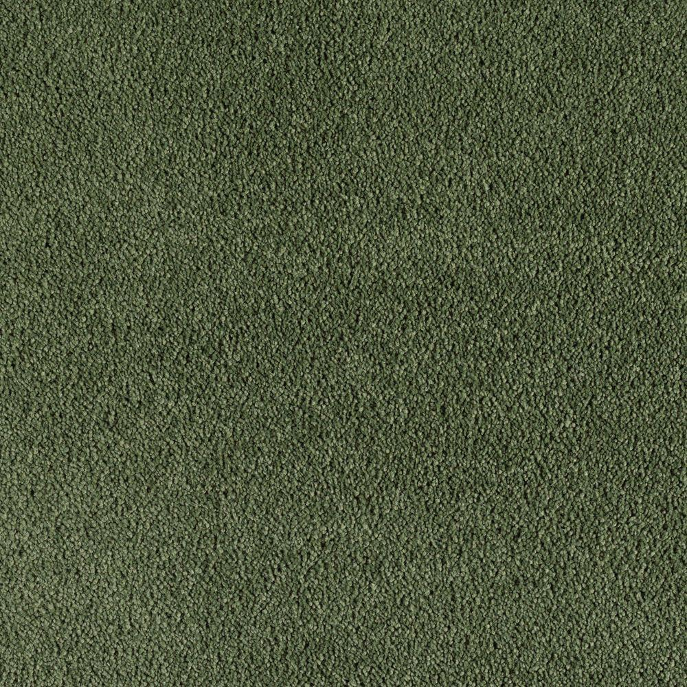 SoftSpring Cashmere II - Color Winter Spruce Texture 12 ft. Carpet