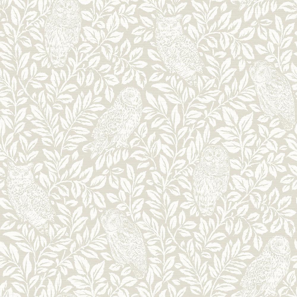 8 in. x 10 in. Parliament Cream Owl Wallpaper Sample