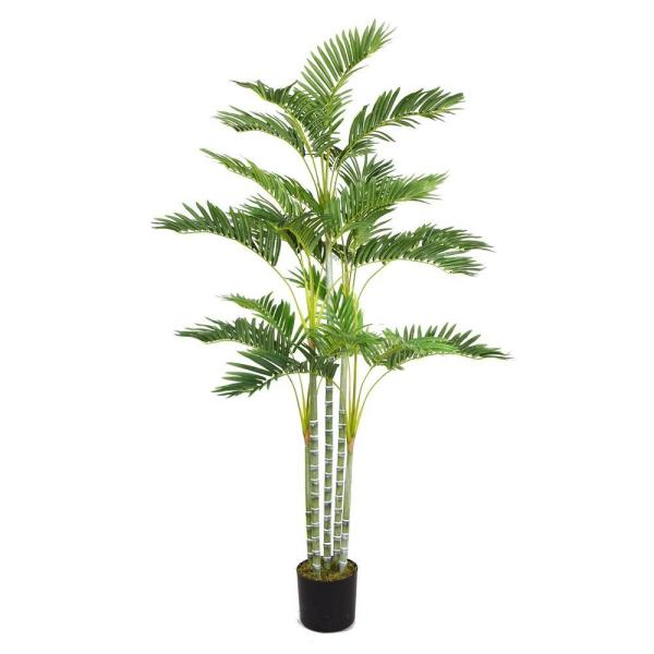 Laura Ashley 38 in. x 38 in. x 68 in. H Palm Tree