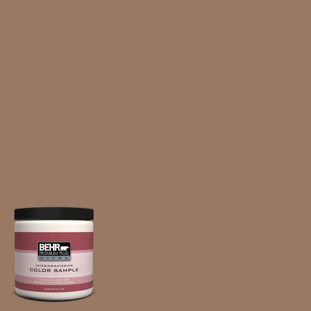 BEHR Premium Plus Ultra 8 oz. #250F-5 Fudge Bar Interior/Exterior Paint Sample