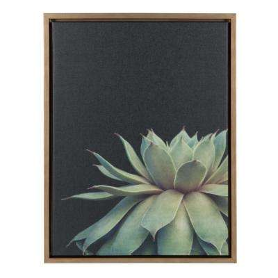"Sylvie ""Succulent 8"" by F2Images Framed Canvas Wall Art"