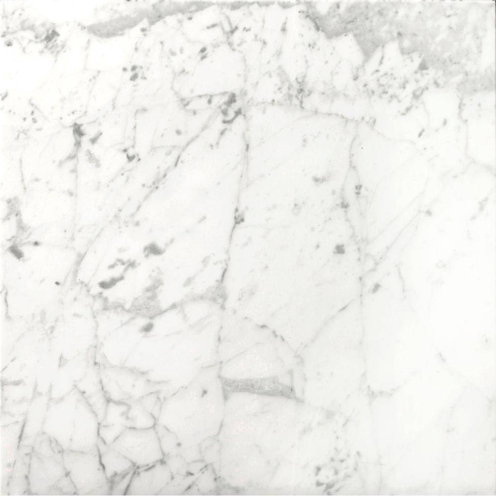 Bianco Gioia 12 in. x 12 in. Marble Floor and Wall
