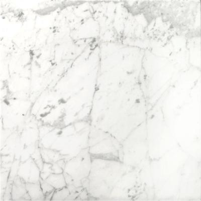 Bianco Gioia 12 in. x 12 in. Marble Floor and Wall Tile