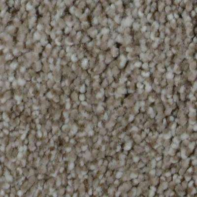 Carpet Sample - Harvest I - Color Chase Texture 8 in. x 8 in.
