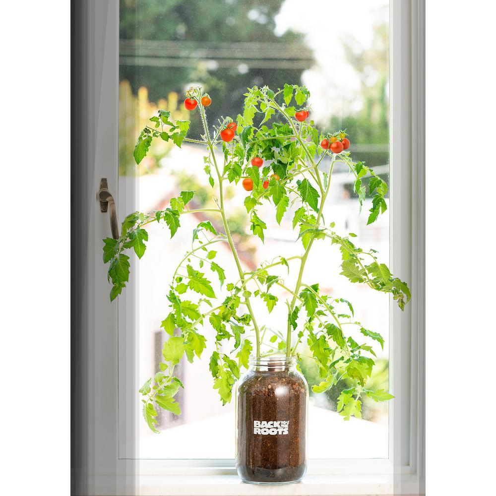 Diy Windowsill Planter: Back To The Roots Windowsill Organic Cherry Tomato Grow