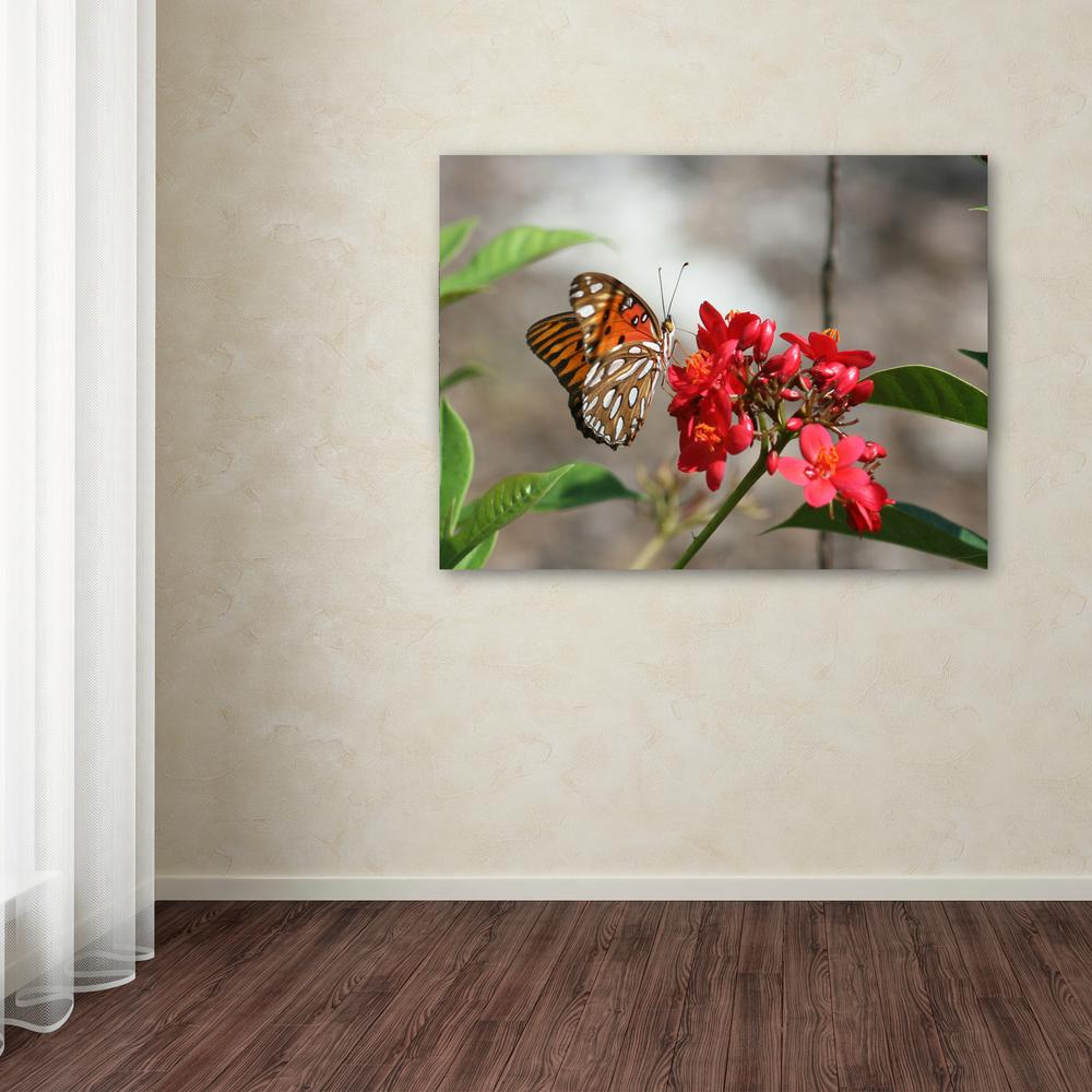 "Trademark 35 in. x 47 in. ""Butterfly on Red Flowers"" by P..."