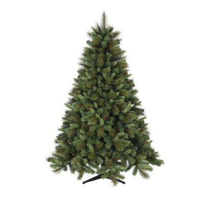 5 ft. to 6 ft. Freshly Cut Frasier Fir Live Christmas Tree (Real, Naturally-Grown)