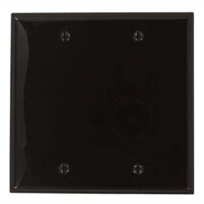 2-Gang No Device Blank Wallplate, Standard Size, Thermoplastic Nylon, Box Mount, Brown