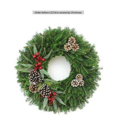 24 in. Fresh Christmas Frost Fraser Fir Evergreen Wreath (Live)