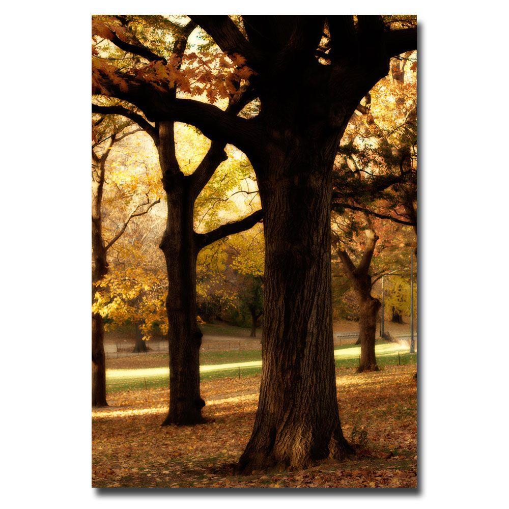 Trademark Fine Art 30 in. x 47 in. Trees Canvas Art