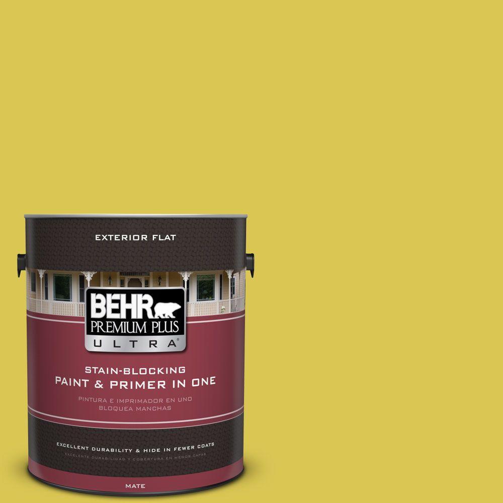 1 gal. #HDC-SM16-10 Pepperoncini Flat Exterior Paint