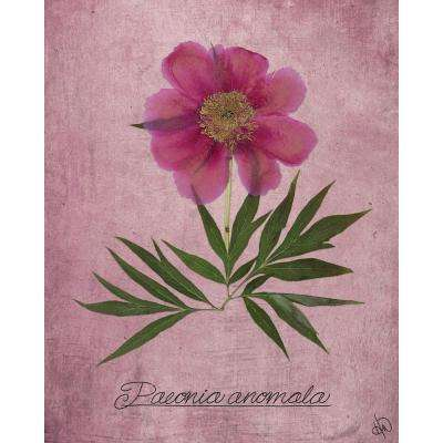 """20 in. x 24 in. """"Paeonia Anomala on Pink"""" Planked Wood Wall Art Print"""