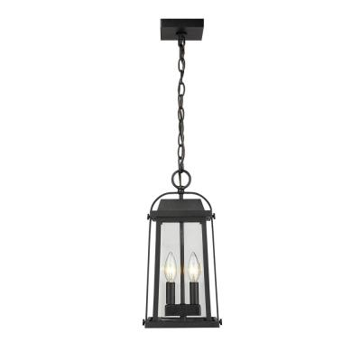 2-Light Black Outdoor Pendant Light with Clear Beveled Glass Shade