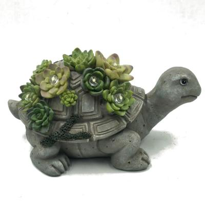 Solar Powered Turtle 5-Light 7.6 in. Integrated LED with Colorful Succulents