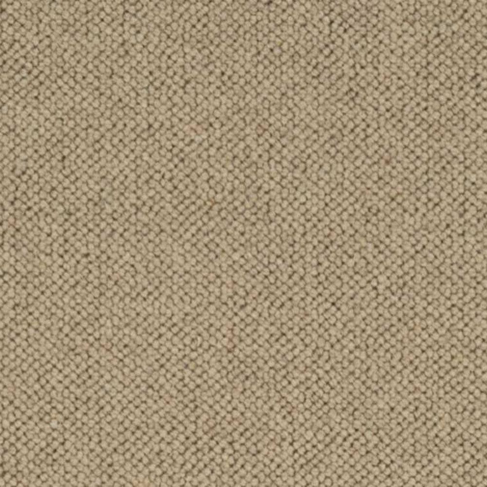 Carpet Sample - Hampton - Color Wheat Loop 8 in. x 8 in.