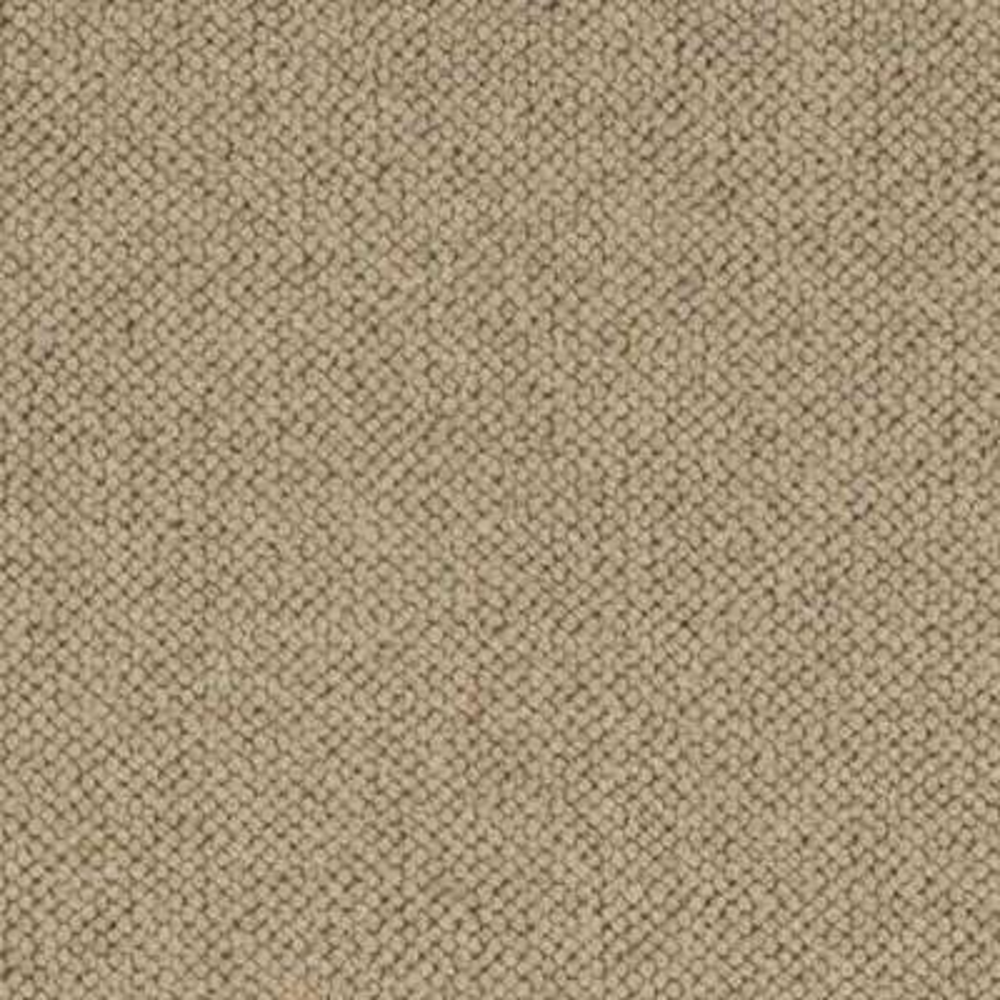 Carpet Sample - Hampton - Color Wheat Pattern 8 in. x 8 in.