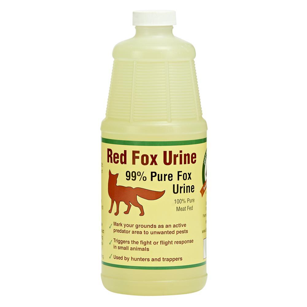 Fox Urine by Bare Ground