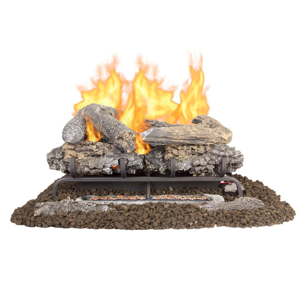 Pleasant Hearth Valley Oak 24 in. Vent-Free Dual Fuel Gas Fireplace Logs with Remote