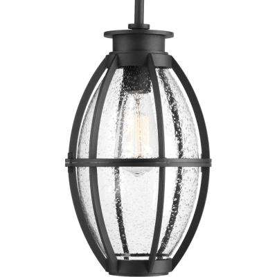 Pier 33 Collection 1-Light Outdoor Black Hanging Lantern