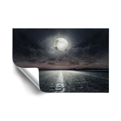 Moon Landscapes Removable Wall Mural