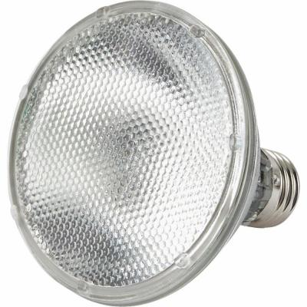 53-Watt Equivalent Halogen PAR30S Dimmable Floodlight Bulb