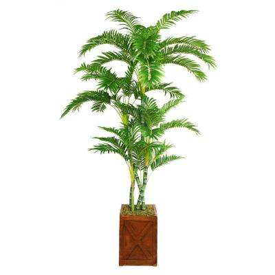 81 in. Tall Palm Tree in 13 in. Fiberstone Planter