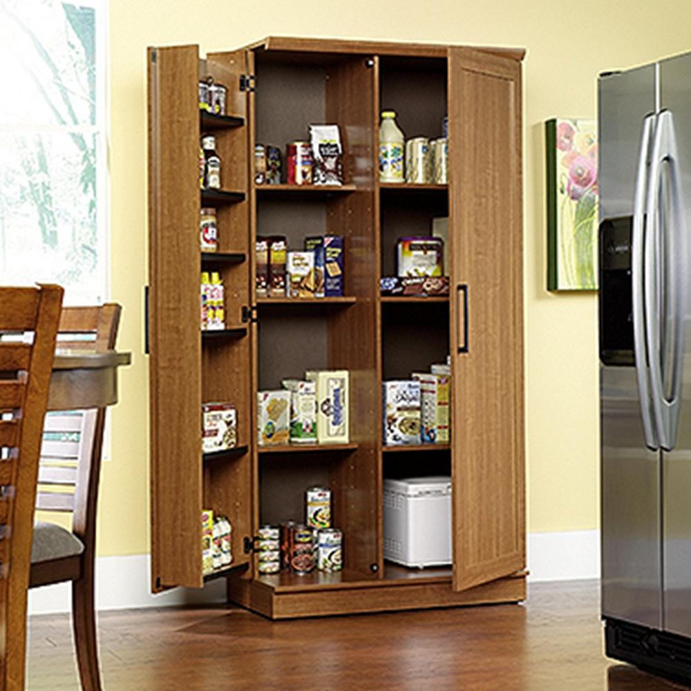 Home Storage And Organization Furniture: SAUDER Home Plus Sienna Oak Storage Cabinet-411965